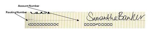 routing number and account number on a check
